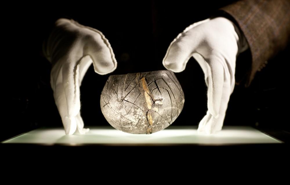 Organische Funde aus der Jungsteinzeit in Dresden