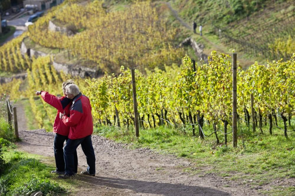Weingut Wackerbarth in Radebeul